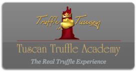 Visit Truffle in Tuscany - Seek and Tasting tour of wines and truffle experience